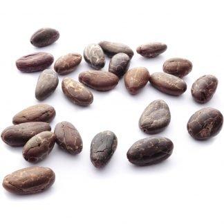 Kakaobohnen umfermentiert